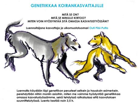 20.1.2015 Studia Generalia, genetiikkaa koirankasvattajille Outi-Piisi Putta Kekkapäässä 30 ihmistä